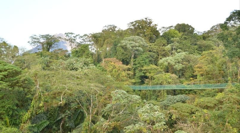 Arenal Skywalk Hanging Bridges