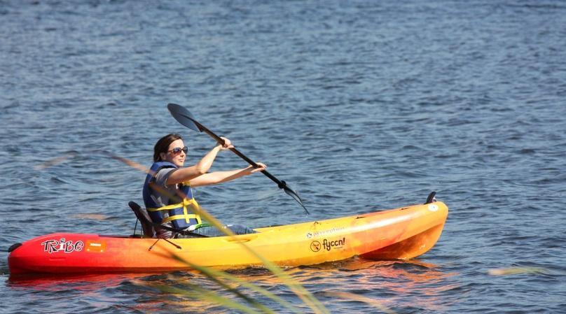 Full-Day Single Person Kayak Rental in Tampa