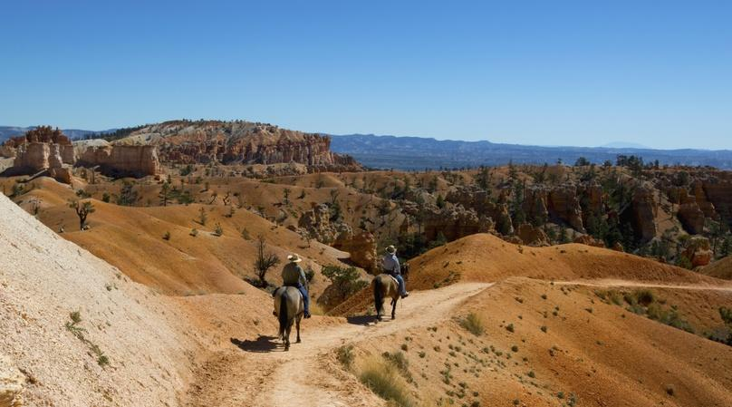 Two-Hour Trail Ride in Red Canyon