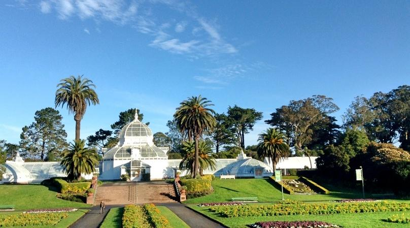 Golden Gate Park 10K Running Tour in San Francisco