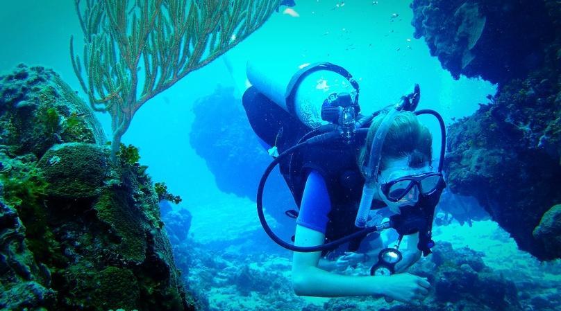 Snorkel Trip in Miami