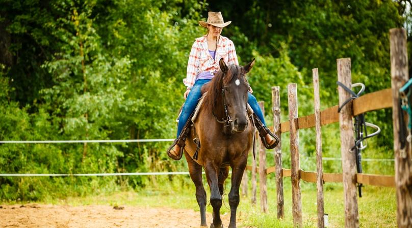 Two-Hour Horseback Trail Ride from Rockwall