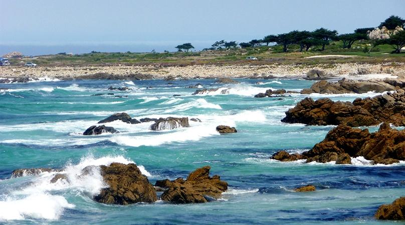 Monterey & Carmel Highway One Tour