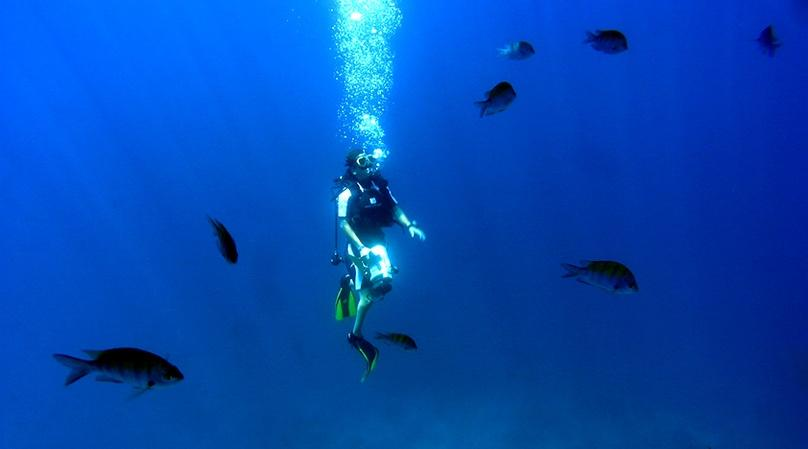 Beginning Scuba Diving Adventure in Cabo San Lucas