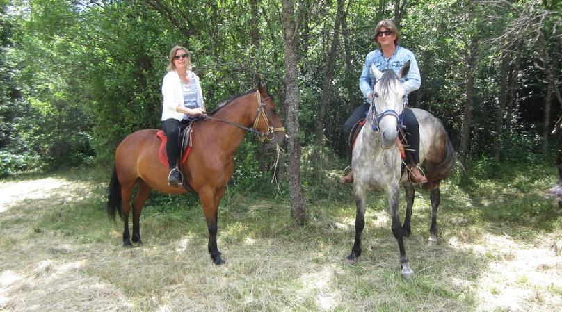 One-Hour Virgin River Horseback Ride in Zion National Park
