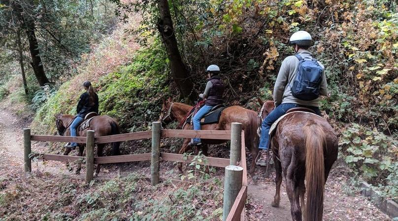 30-Minute Trail Ride at Golden Gate Park