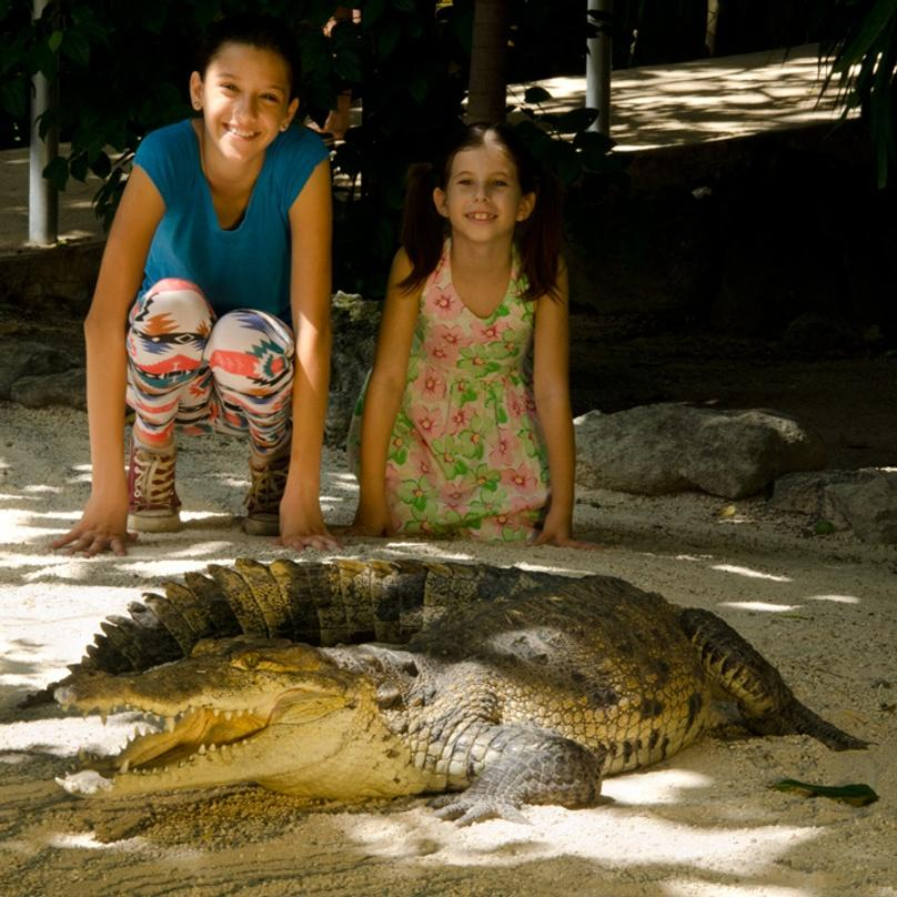 Interactive Tour of a Zoo in Cancun