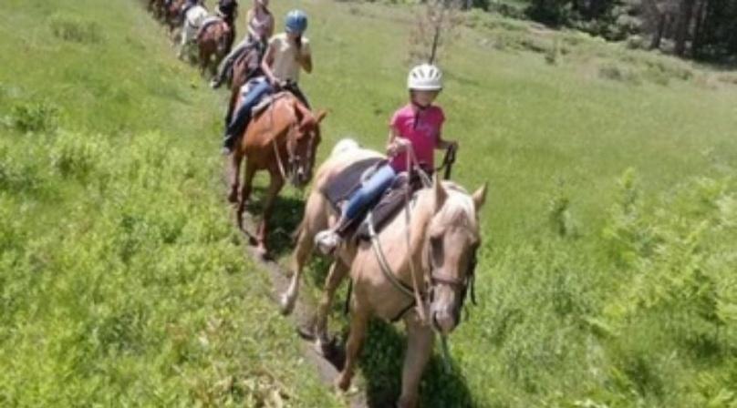 2-Hour Sierra Horseback Ride