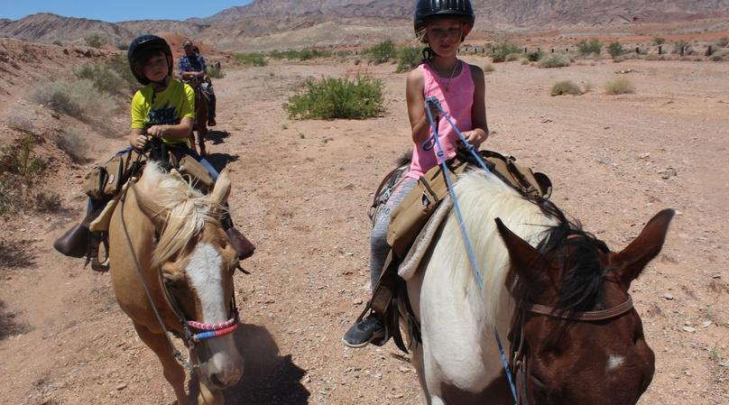 Birthday Party Trail Riding Experience