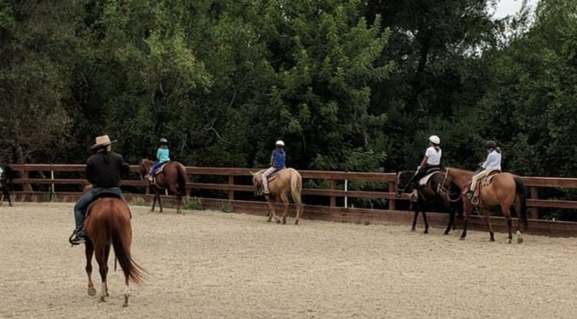 1-Hour Horseback Riding Lesson at Golden Gate Park
