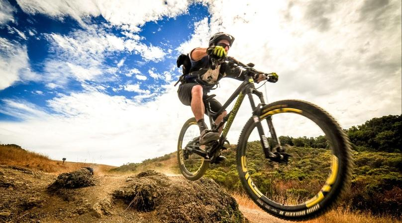 Private Marin County Mountain Bike Tour