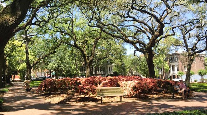 The Savannah Saunter Walking Tour