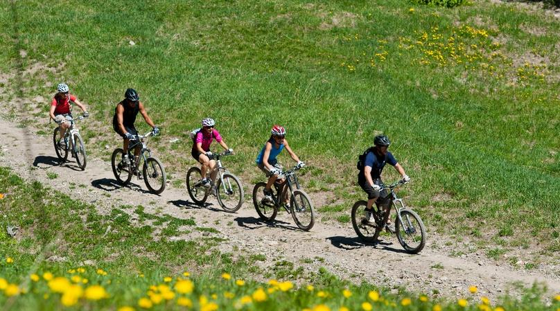 Guided Bike Tour of Wineries in Calistoga