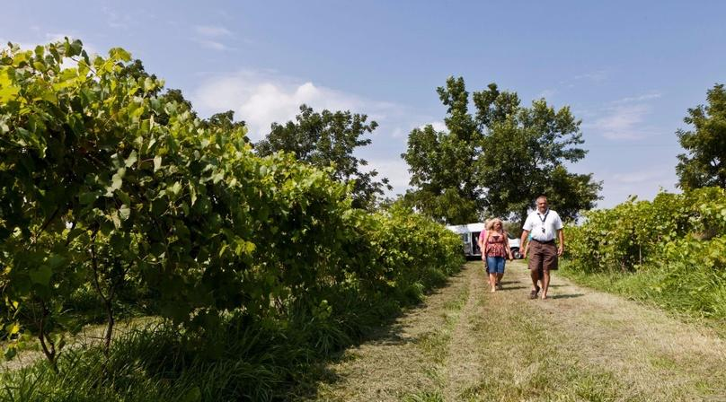 Private Wine Tour to SW Michigan