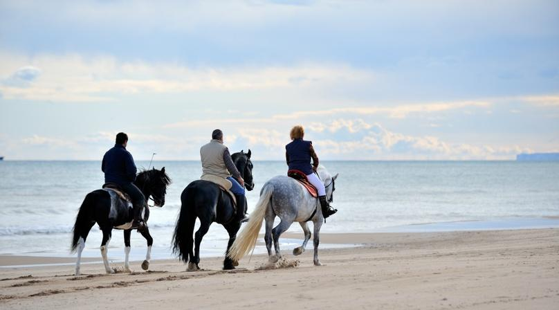 90-Minute Beach Adventure on Horseback in San Diego