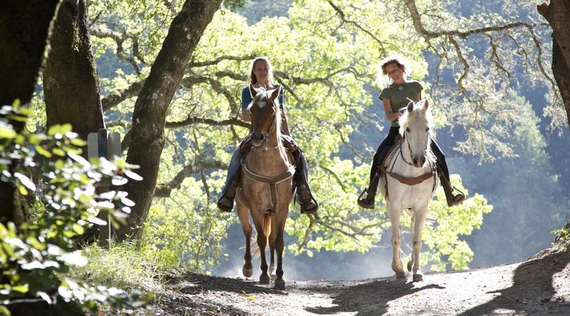 Half-Day Sandbench Horseback Ride in Zion National Park