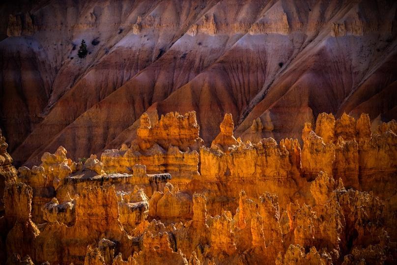 Bryce Canyon Half-Day Peek-A-Boo Loop Horseback Ride