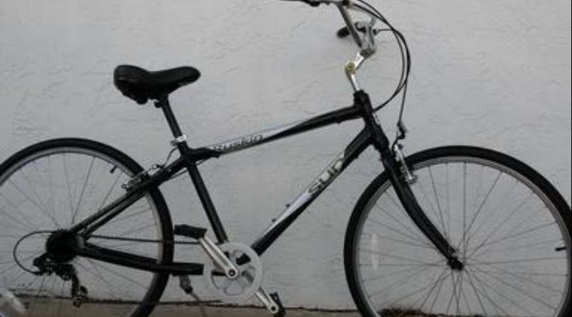 Multi-Speed Bike Hourly Rental in Naples