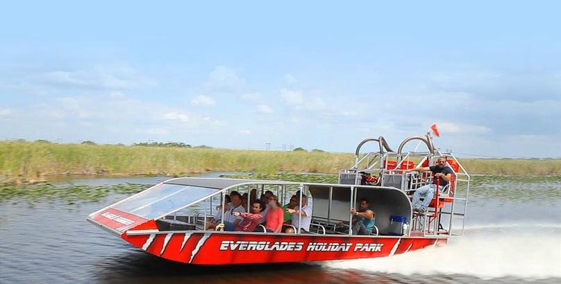 Everglades Tour and Airboat Ride in Miami