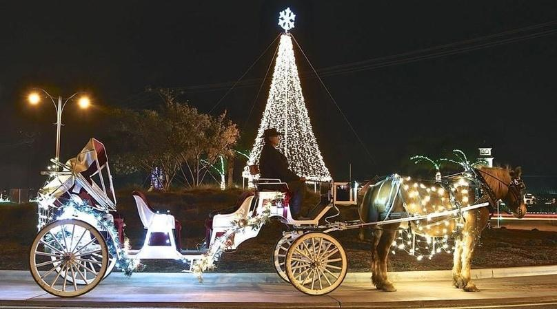 Private Jingle Bell Sleigh Ride in Temecula