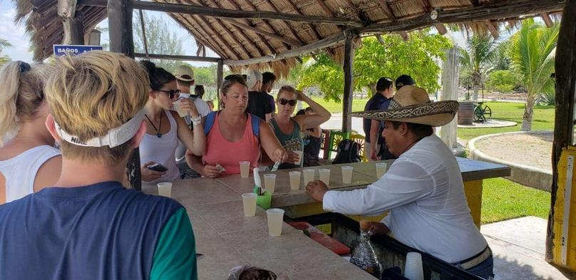 Guided Cozumel Walking Tour with Lunch