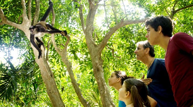 Guided Interactive Zoo Visit in Cancun