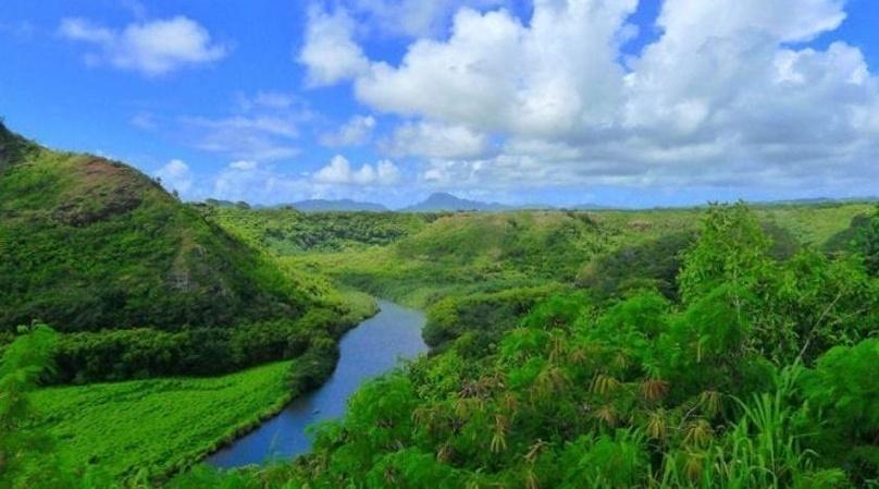 Kauai Waimea Canyon & Wailua River Tour