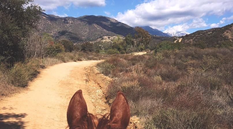 1-Hour Marshall Canyon Horseback Ride in La Verne