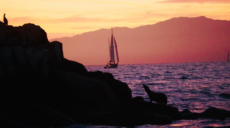 2-Hour Santa Monica Bay Sunset Sail with Gourmet Hors d'oeuvres