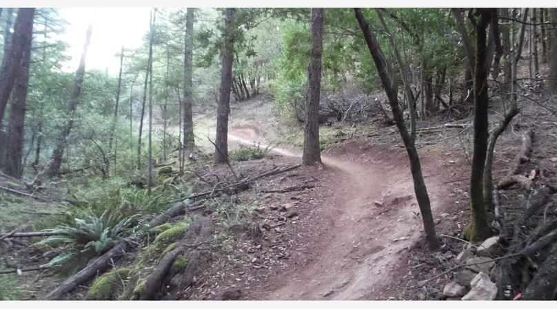 Annadel Mountain Bike Guided Ride 2-3 hrs