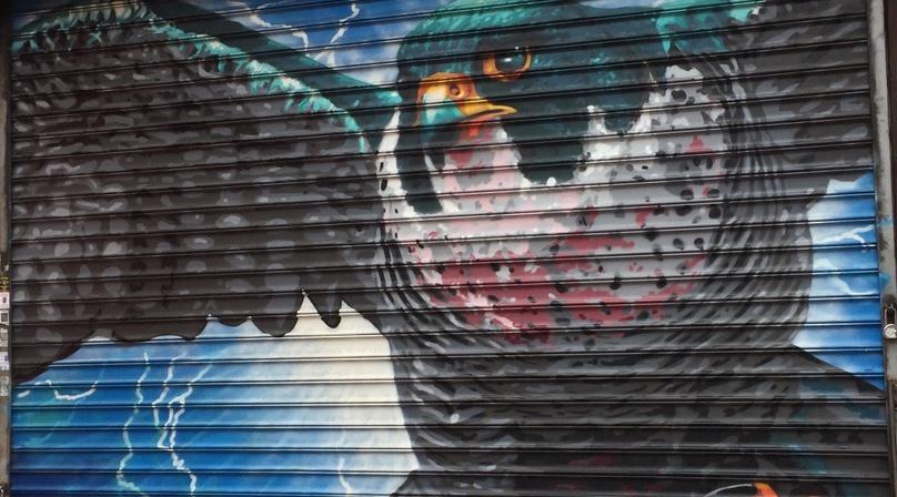 Audubon Bird Mural Project walking tour
