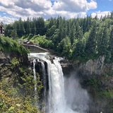 The Mj Family - Hiring in Tacoma