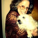 Terri S. - Seeking Work in Bella Vista