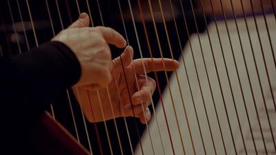 Harpist Daniel Over