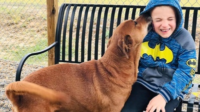 7 Year-Old Boy Has Saved Over 1,000 Shelter Dogs Through Viral Videos
