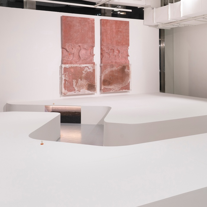Installation view of it clings like a leech, Yale School of Art Sculpture MFA thesis exhibition.