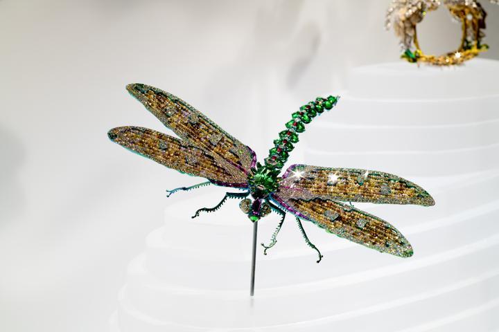 BC - Wallace Chan Dragonfly Brooch_DF.jpg