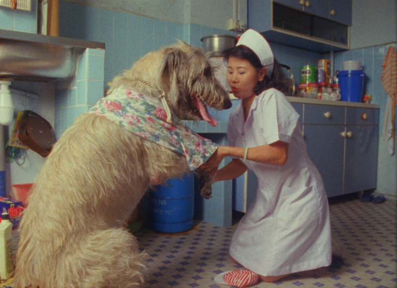 NURSE W DOG_MASTER STILL.jpg