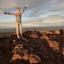 Allyson S. - Seeking Work in Costa Mesa