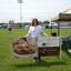 Michelle J. - Seeking Work in Joliet