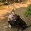 Lauren S. - Seeking Work in Asheville