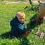 The Gibson Family - Hiring in Walnut Creek