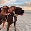 Nicole Y. - Seeking Work in North Miami Beach