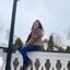 Katelyn M. - Seeking Work in Round Lake