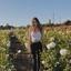 Kasidy Y. - Seeking Work in Petaluma