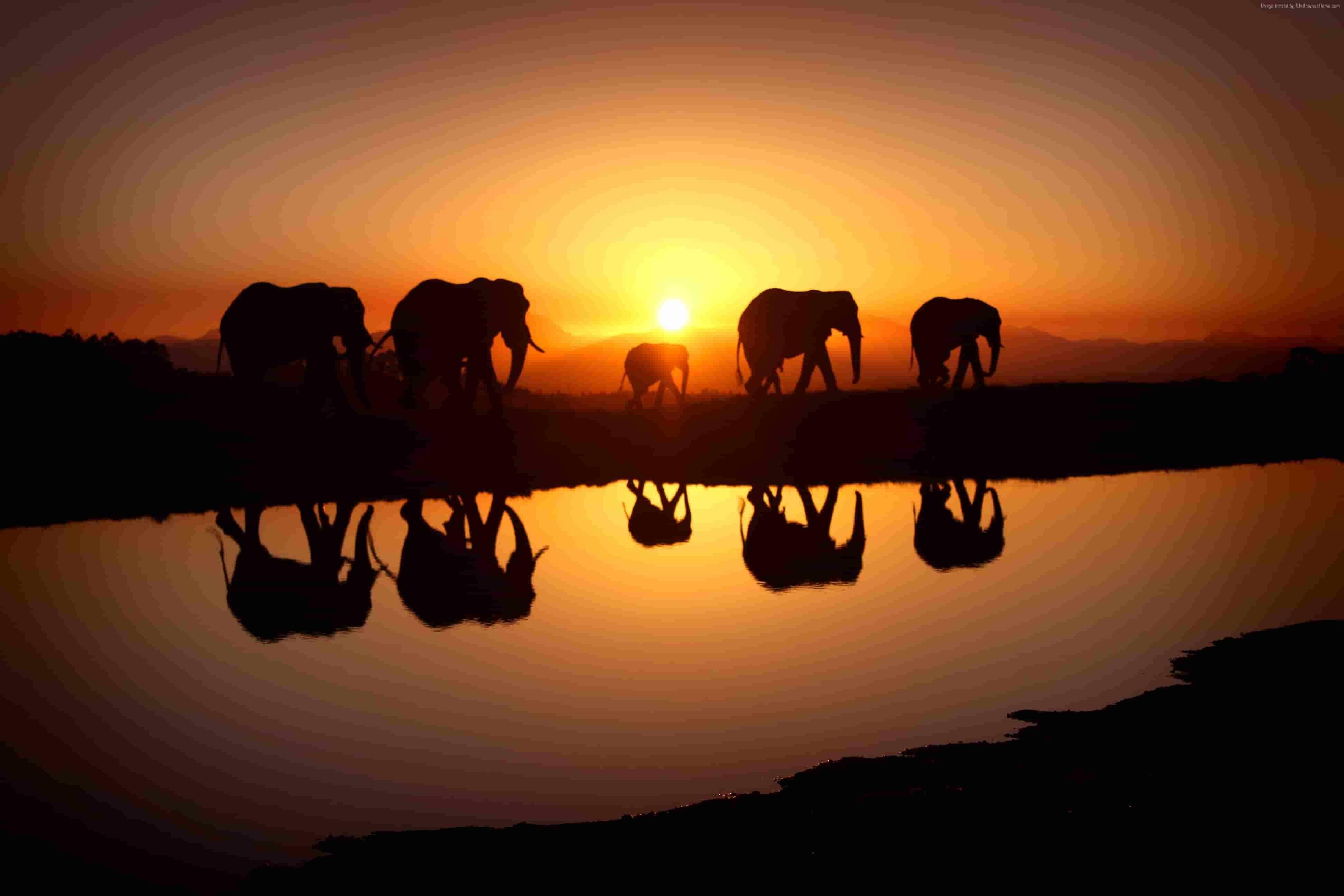 7 Days Luxury Kenya Safari