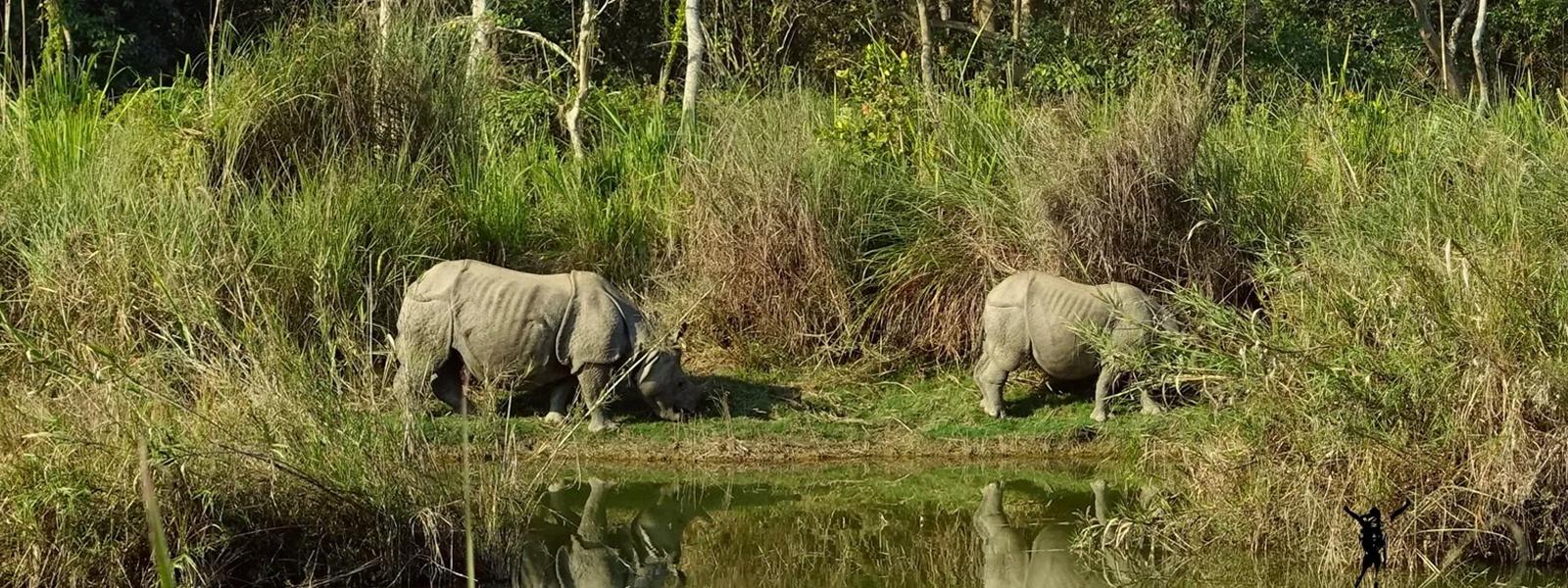 Chitwan National Park Tour - 3 Days