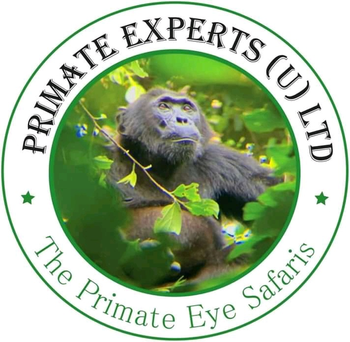 Primate Experts Uganda ltd