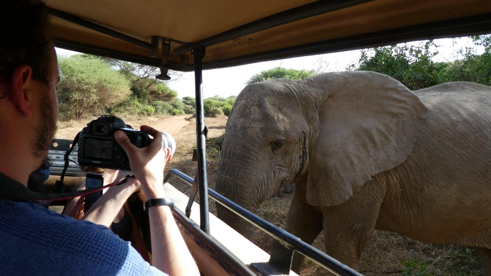 4 Days Tanzania Sharing Safari Tarangire, Ngorongoro Crater, Serengeti National Park with AFRICA NATURAL TOURS L.T.D