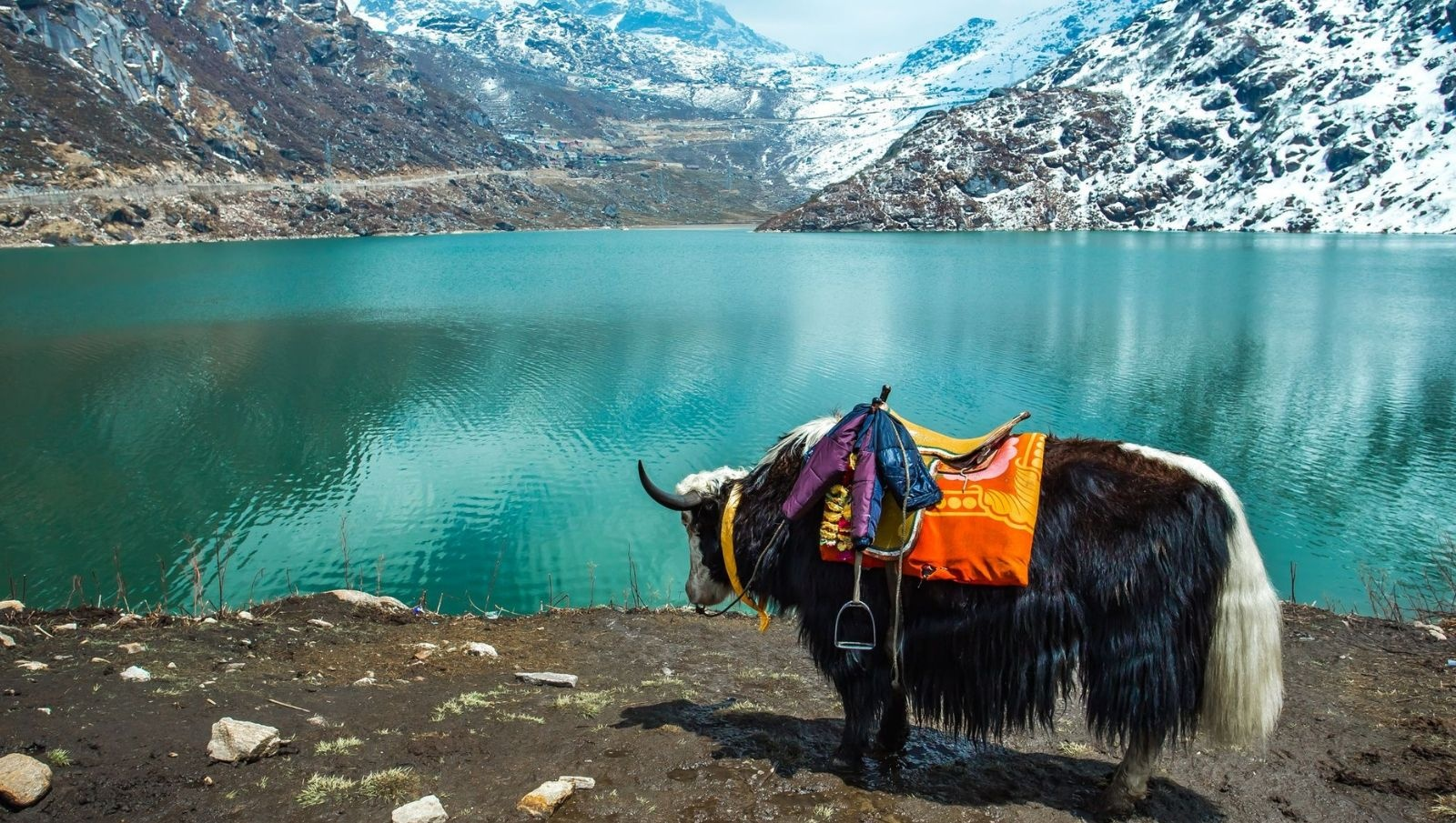 North East India with Bhutan Tour